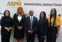 Sustainability, A Driver Of Innovation- Ogbechie-marketingspace.com.ng