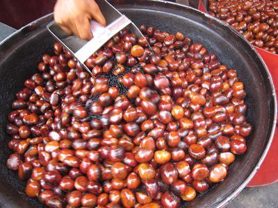 chestnut7