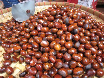 chestnut8
