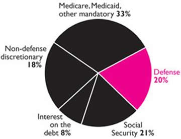 the government's deceptive pie chart