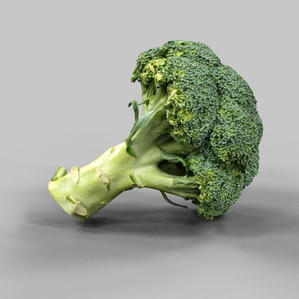Brocoli 3D Vegetable Model