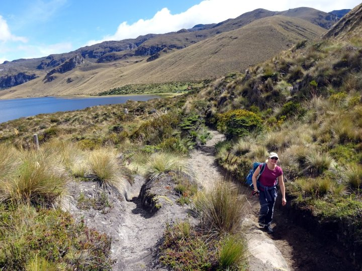 Over the next three days we had some pleasant trekking across the outlandish páramo landscape
