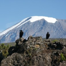 The snows of Kilimanjaro, and why seeing is believing