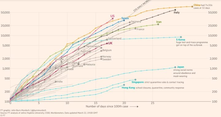 Country by country: how coronavirus case trajectories compare. Cumulative number of confirmed cases, by number of days since 100th case (Picture: John Burn-Murdoch / Financial Times)