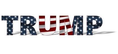 Trump Donald America Donald Trump courtesy of Pixabay