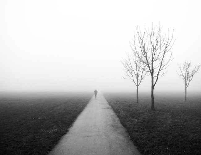 Fog in Regents Park by Dom Crossley