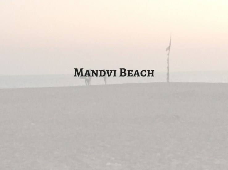 Mandvi Beach Mark My Adventure