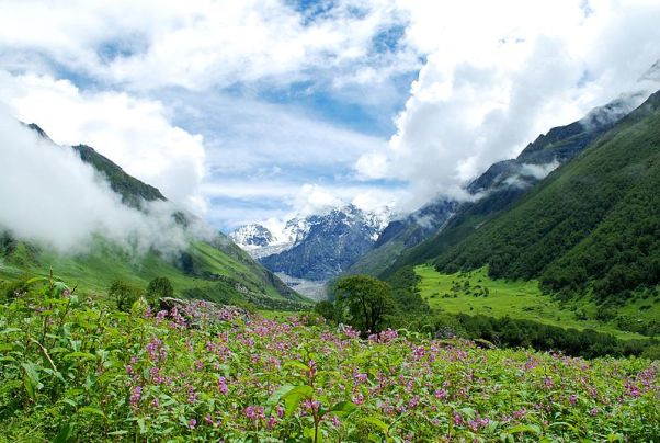 Hemkund Valley of Flowers Mark My Adventure