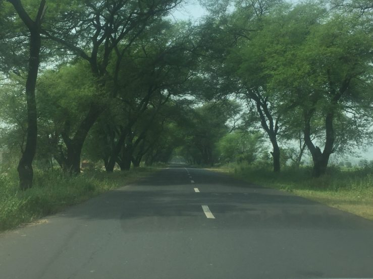 Enroute To Kanha National Park