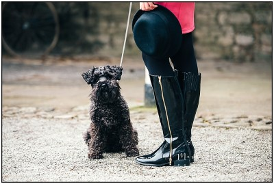 Black Riding Boots with Scruffy pup