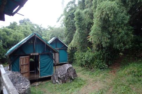 Camp 1 - Mantella