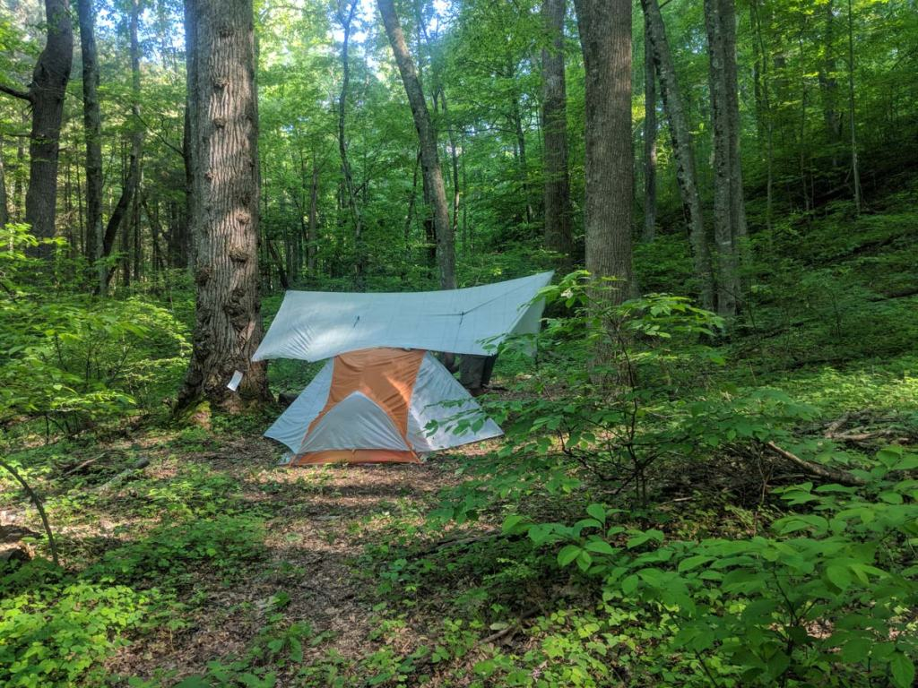 Backpacking tent in the woods with tarp hanging above it