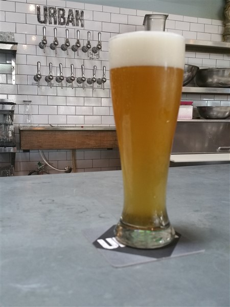 The Royal Bohemian Pilsner at Urban Comfort Brewery in St. Petersburg, Florida