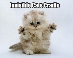 """Invisible cat picture"""