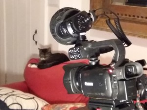 Canon XA30 with Rode Videomic X