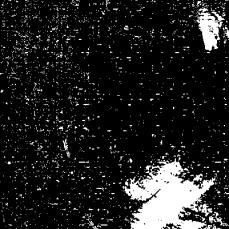 2014-06-06_13_58_29_Imagemagick-Ausgabe