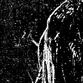 2014-06-06_14_41_40_Imagemagick-Ausgabe