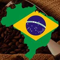 Brasiliansk Kaffe 3