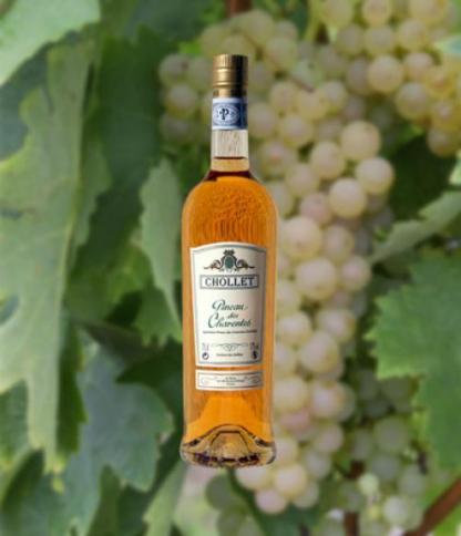 Pineau Des Charentes (Chollet)