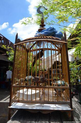 Ayutthaya Floating Market Käfig