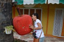 Ayutthaya Apple and apple