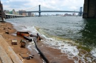 Strandgut unter der Brooklyn Bridge New York
