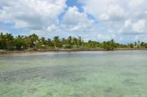 Das Ufer von Key West