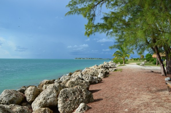 Felsufer des Fort Zachary Taylor Historic State Park, Key West