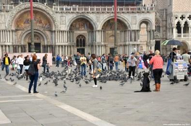 Markusplatz / Piazza San Marco
