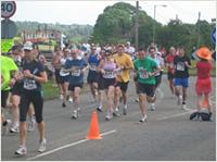 St Albans Half Marathon - 20096