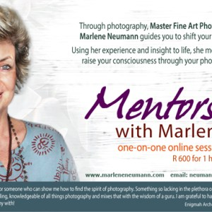 Mentorship with Marlene