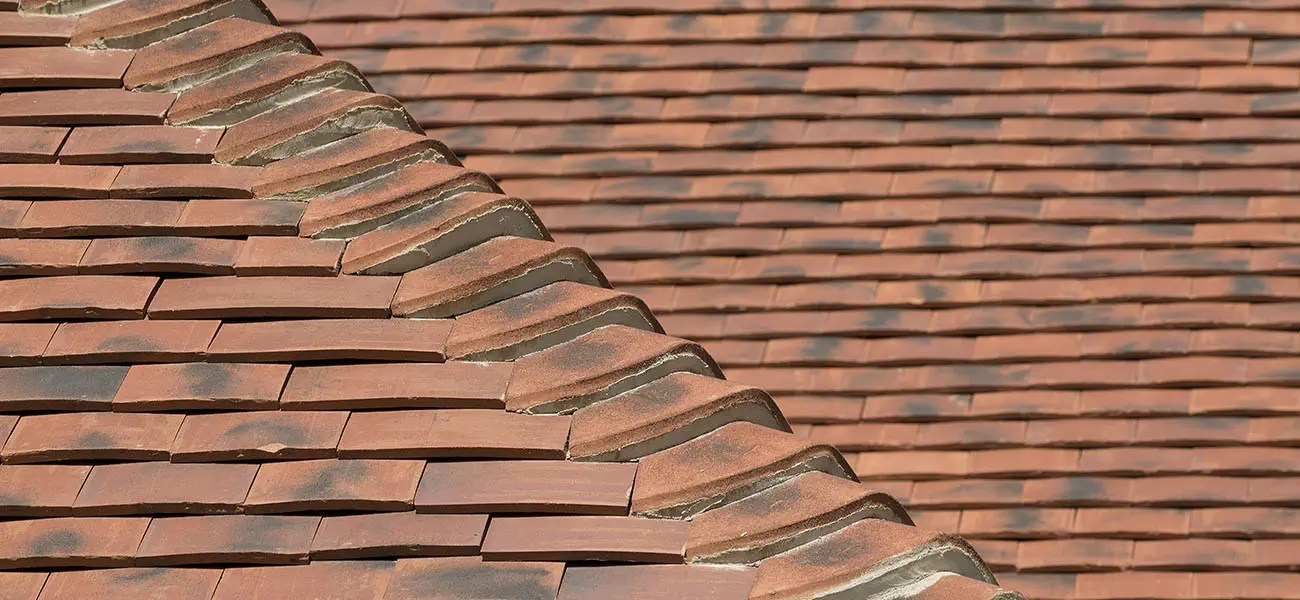 dry fix for my ridge and hip tiles