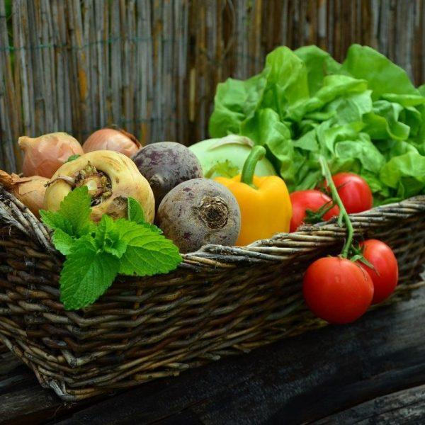 Waarom een gezonde leefstijl belangrijk is