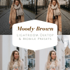 Moody Brown Lightroom presets