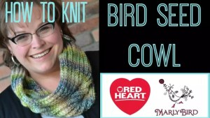 Free Bird Seed Cowl Pattern by Marly Bird and Red Heart Yarns