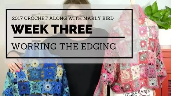 Marly Bird Granny Square Motif Cardigan Section 3 Edging