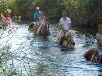 Marmaris At Safari Turu