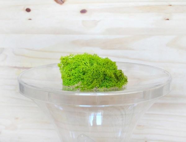 tabouret-green