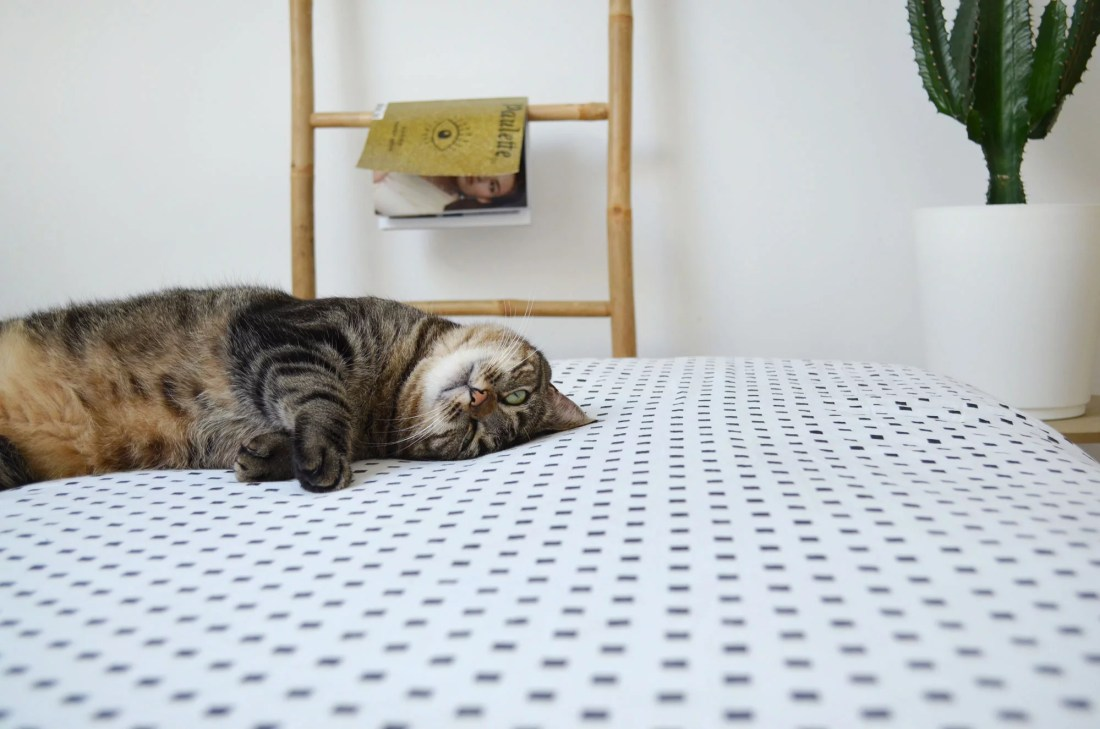 room-tour-chambre-cat-lifestyle