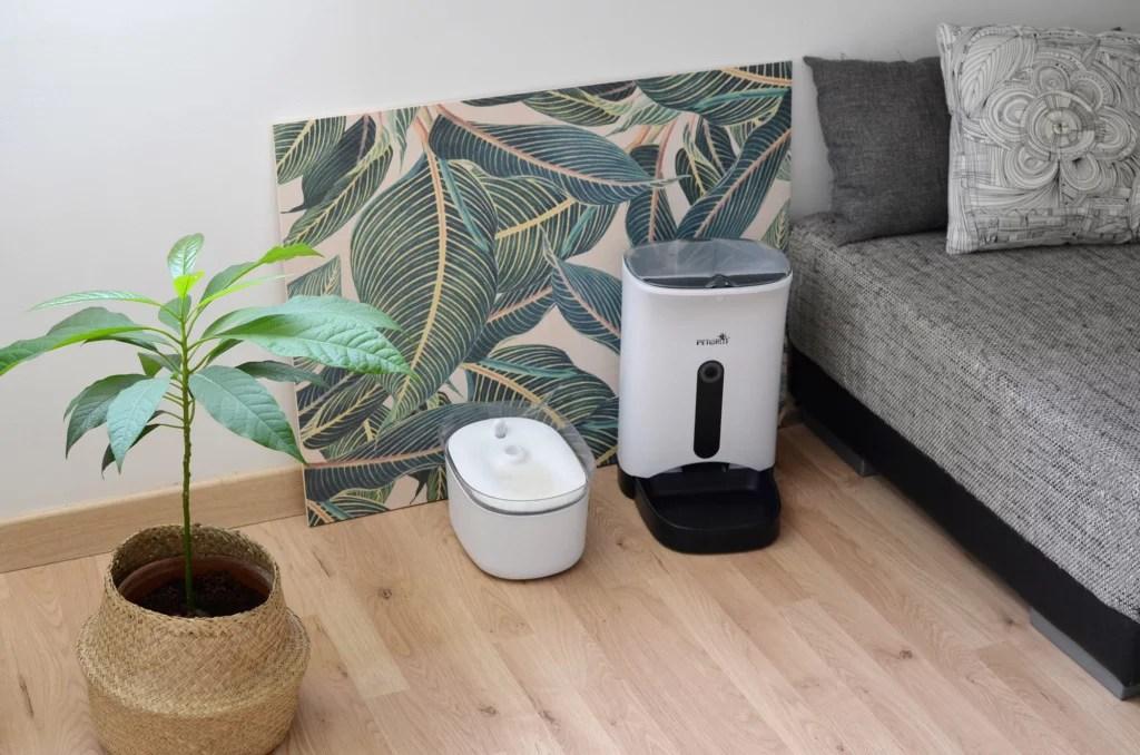 chat-appartement-gamelle-connectee-petwant-gamelle-eau