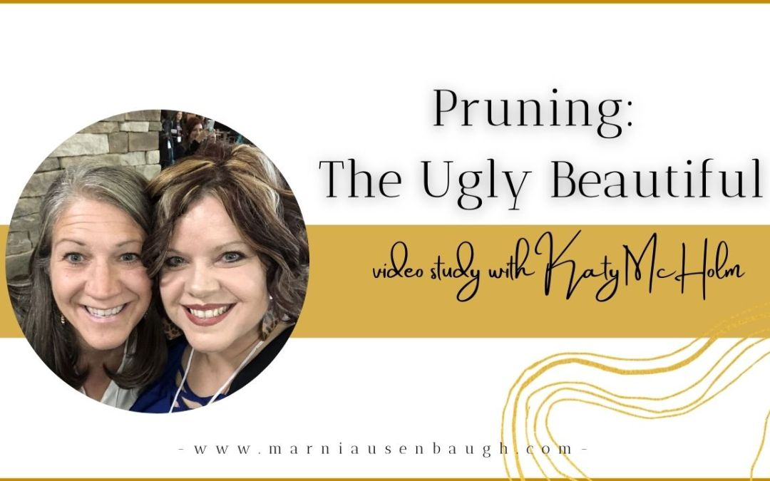 Pruning: The Ugly Beautiful