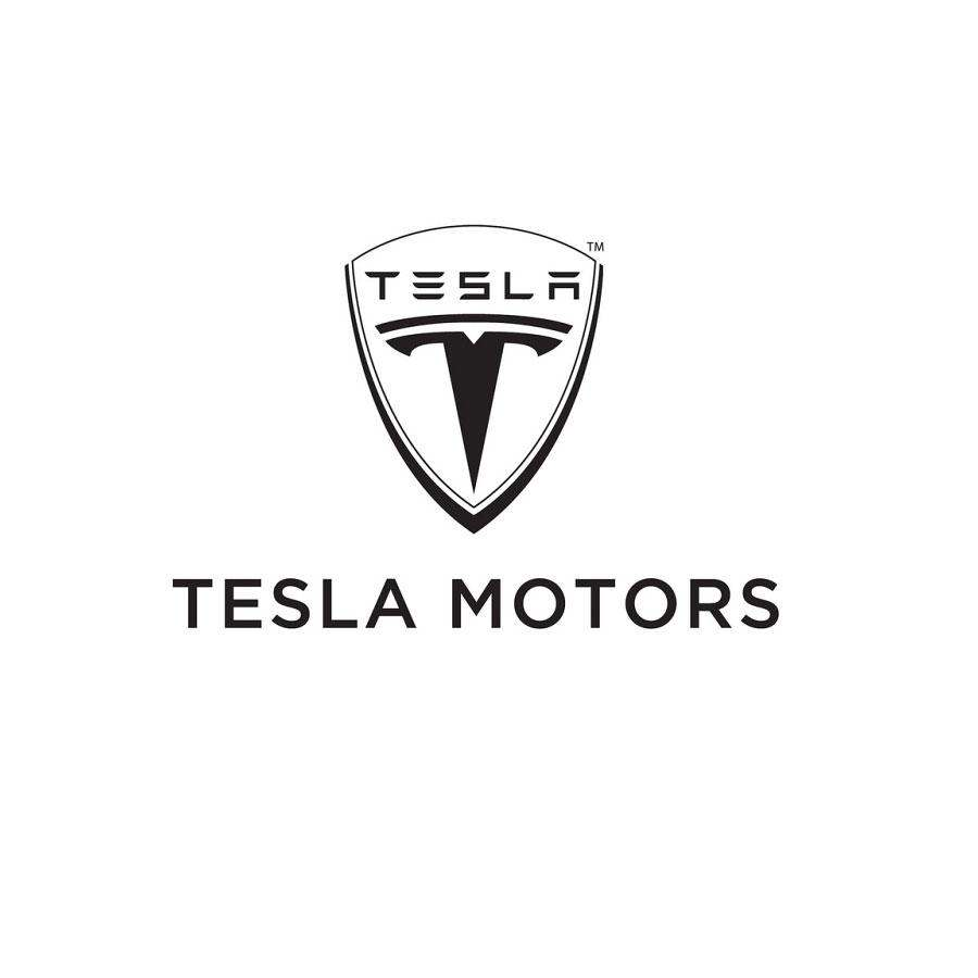 Marnie Greenberg and Event Sponsor Tesla Motors at the Safety Harbor Kids Polo Charity
