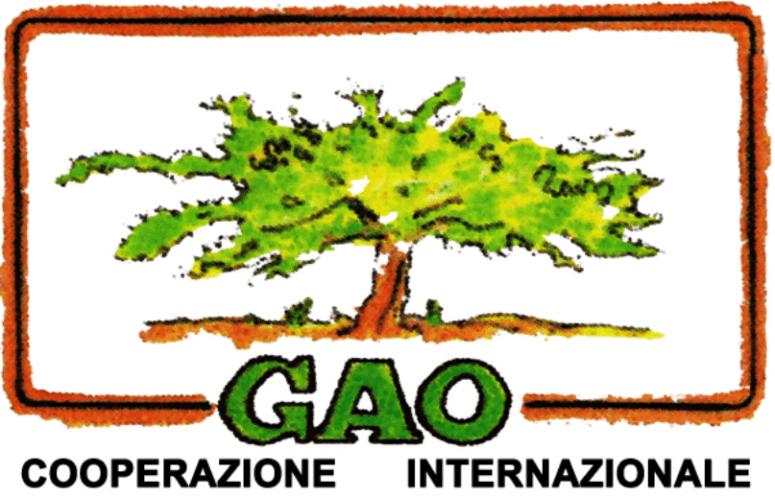 gao cooperazione internazionale