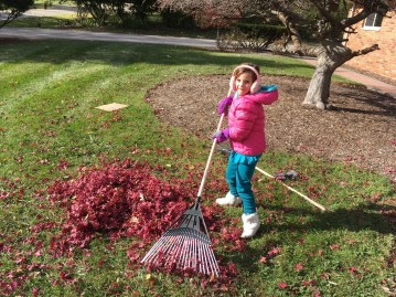 Zoey Raking Leaves