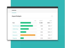 Mint Snapshot in Budgeting