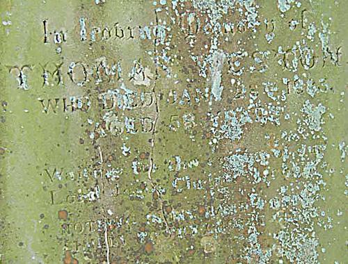 Gravestone with slightly legible writing