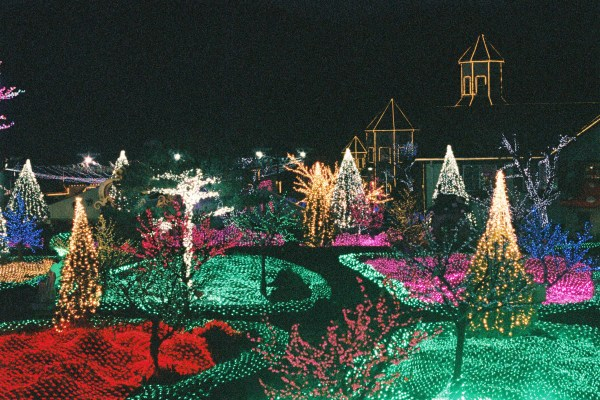 Pocheon Herb Village – Light Festival