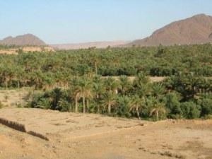 Figuig em Marrocos