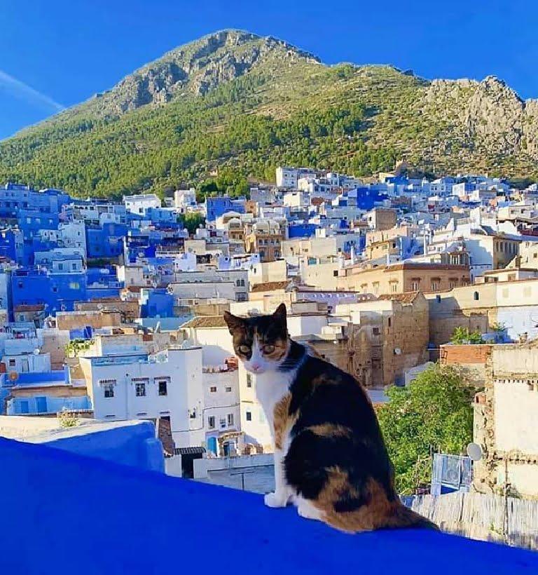 Ruta 20 días desde Tanger - Viajes por todo Marruecos de norte al sur