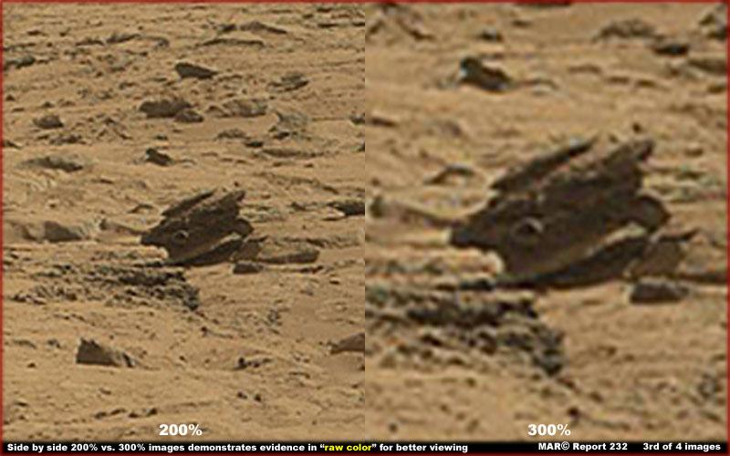 Catorci su Marte